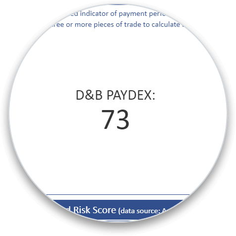 D&B Paydex Score addon section on a business credit report