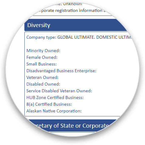 Diversity Data Graphic addon section on a business credit report